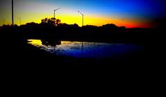Sunset and Trees (VinceFL) Tags: nature nikon vignette orlandoflorida manfrottotripod afsdxnikkor18105mmf3556gedvr nikond7000 vincefl reallycooked