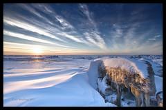 Runaway (Explored) (Ed Boudreau) Tags: sunset alaska turnagainarm iceflow