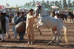 Horse Dance (Nadeem Khawar.) Tags: pakistan dance drum culture beater pakistaniphotographer horsedance landscapephotographer nadeemkhawar