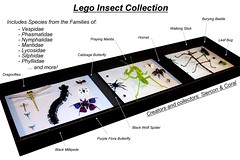Lego Insect Collection (Siercon and Coral) Tags: butterfly bug insect spider lego moth bugs collection hornet millipede stickbug creepycrawly prayignmantis battlebugs