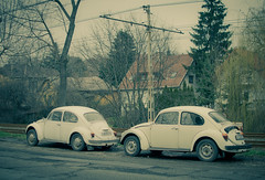 back in time... (marios_ch) Tags: trees sky white black flower tree green eye cars abandoned nature colors birds yellow forest 35mm grey nikon day alone afternoon cloudy budapest ground stick 5100 nikkor entry dx 18g d5100 rememberthatmomentlevel1 rememberthatmomentlevel2