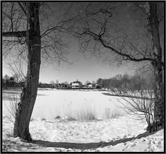 Leica M Monochrom with Super-Elmar 21mm, red filter (Dierk Topp) Tags: leica bw snow eis 21mm superelmar21mm leicammonochrom