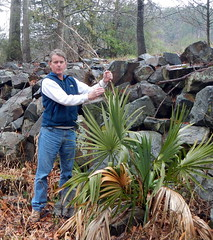Erik stands holding Sabal stalks (drterdal) Tags: palm palmetto sabal mccurtain sabalminor coldhardy