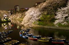 colorful boats and cherry blossoms (gemapozo) Tags: japan night cherry tokyo pentax 日本 sakura k5 chidorigafuchi 夜桜 千代田区 東京都 千鳥ヶ淵緑道 smcpfa31mmf18