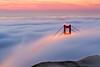 Peekaboo (Jared Ropelato) Tags: sanfrancisco park bridge jared nature fog sunrise landscape photography bay outdoor environmental photograph goldengate sanfran enviro 2013 ropelato ropelatophotography