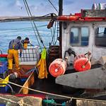 "Cleggan Fishermen <a style=""margin-left:10px; font-size:0.8em;"" href=""http://www.flickr.com/photos/89335711@N00/8596649044/"" target=""_blank"">@flickr</a>"