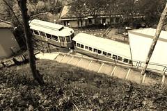 Cremagliera Sassi - Superga (stefanoferro212) Tags: torino tram superga cremagliera
