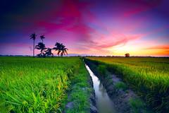 THE GREATEST GIFT. (Kamaruz Zaman) Tags: canon canonphotography colourful colour landscapes leefilter longexposure singhrayfilter slowshutter penang paradise