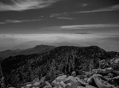 Babylon (joshuammulligan) Tags: mtsanjacinto summit mountain haze smog pollution losangeles palmspringstram film fujigw645 gw645