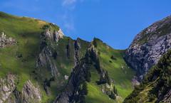 sterreich / Austria: Kleinwalsertal (CBrug) Tags: kleinwalsertal bad mittelberg brgund brgundalpe vorarlberg sterreich austria outdoor landschaft landscape grat bergkamm felsen rocks gras grass wiese
