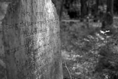 Oak Ridge Cemetery #3 (PositiveAboutNegatives) Tags: leica leitz sl leicaflexsl leicaflex vintagecamera leicar 35mmelmarit wideangle film analog ilford panf iso50 bw blackandwhite filmphotography grave headstone cemetery plot graveyard coolscan florida nikon9000scanner