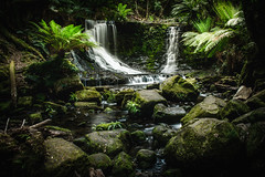 Waterfall heaven (mikedeclerck) Tags: waterfall tasmania shutter shutterspeed nature natgeotravel natgeo naturelovers nationalgeographic national nd landscape lightroom landshape longfocus river canon