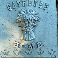 Gathered Home (Bigadore) Tags: whitebronze