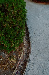 (mariangelalobianco) Tags: erice sicilia canaletta pietrella aiuola drenare