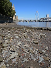 Remants of the cartwheel recorded in 2013, now scattered across the foreshore (Thames Discovery Programme) Tags: thamesdiscoveryprogramme westminster london community archaeology riverthames fwm06