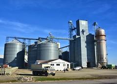 101814-309F (kzzzkc) Tags: nikon d7100 usa minnesota elevator grain warehouse bins truck
