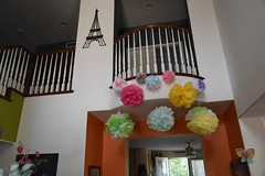 puffballs (Thong Bartlett) Tags: puffballs babyshower party decoration