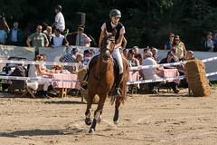DSC01959_s (AndiP66) Tags: blau aespli derby hindelbank springen 2016 pferd horse schweiz switzerland kantonbern cantonberne concours wettbewerb horsejumping springreiten pferdespringen equestrian sports pferdesport sport martinameyer grueb wolhusen luzern sony sonyalpha 77markii 77ii 77m2 a77ii alpha ilca77m2 slta77ii sony70400mm f456 sony70400mmf456gssmii sal70400g2 andreaspeters bern ch september