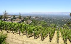 IMG_3745 (kz1000ps) Tags: tour2016 california sanfrancisco bayarea saratoga mountainwinery vineyard siliconvalley aerial vista skyline america unitedstates usa scenery landscape