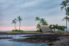 Little Grass Shack (Linda Cochran) Tags: bigisland hawaii beach hut shack hawaiianheritage palmtrees maunalani