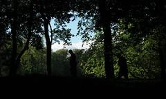 A Dark Walk ( Jamie Mitchell) Tags: queens park glasgow scotland scottish glaswegian nature forest woods woodland trees leaves summer september autumn light shadows dark branches trunks urban city rural silhouette people portrait location