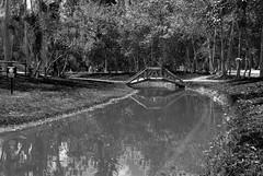 Usa el amor como puente - Cerati / Uses love as a bridge - Cerati (Juan David Bastidas Blanco) Tags: blancoynegro blackandwhite puente bridge bogota colombia