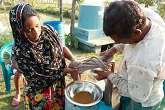 Bina Majhi, hatchery owner, Bangladesh. (WorldFish) Tags: hatchery fish bangladesh bina businesswoman