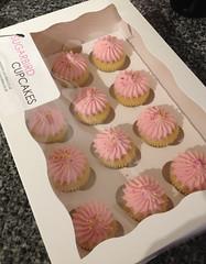 Strawberry Daiquiri Mini Cupcakes