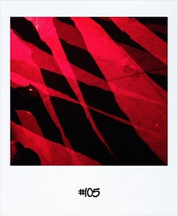"#DailyPolaroid of 11-1-13 #105 • <a style=""font-size:0.8em;"" href=""http://www.flickr.com/photos/47939785@N05/8396124570/"" target=""_blank"">View on Flickr</a>"