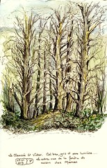 Arbres - Trees (martinepittet) Tags: aquarelle journal croquis uskfrance