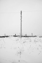 Grin Low Road telegraph pole in the snow (The Rural Eye) Tags: camera winter food snow mountains west eye english wool rural fence newcastle landscape photography james photo spring buxton university photographer shropshire sheep cheshire image farm district derbyshire traditional hill farming flock north under january archive picture culture photojournalism documentary peak william meat pole professional lee land chop lamb production farms british humphrey farmer ba tradition agriculture inspirational blizzard baa telegraph staffordshire herd hughes mutton journalism lyme degree freelance midlands woolly spender ovine 2013 ravilious leewilliamhughescom