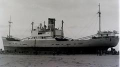 stardust (bertknot) Tags: shipwreck wreck shipwrecks stardust wrecks beaching sinkingship stranding scheepswrak sinkingships beachedships scheepswrakken