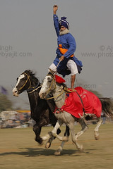 Nihang Baba Maghar Singh does it again! (Ajit Pal Singh) Tags: two horses people india tractor game history sports sport festival youth rural speed photo dance high construction war colorful village bullock action folk bare events traditional religion culture mini games event riding winner vehicle warrior effort indians tug olympics sikh cart tradition agriculture punjab popular schedule kila sponsor bravery agricultural daredevil stunt bhangra deliver courage gallop daring gallary implements ludhiana compete galloping quila sportsfestival footed grewal kabbadi raipur giddha kilaraipur ruralsports tractive kilaraipursportsfestival
