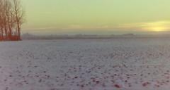 dutch winter (24) (bertknot) Tags: winter dutchwinter dewinter winterinholland winterinthenetherlands hollandsewinter winterinnederlanddutchwinter