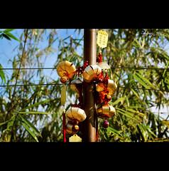 許願 | make a wish (Chez C.) Tags: light red bells blessings hongkong chinese culture bamboo bunch hanging wish tradition windchime wongtaisin customs tangled 風鈴 wellwishes nikond600 afsvrzoomnikkor70300mmf4556gifed