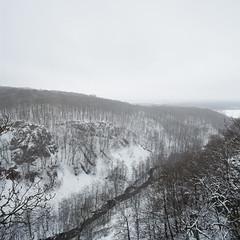 Vinter Sdersen V (Gustaf_E) Tags: winter snow nature nationalpark skne vinter sweden sverige sn utsikt beech trd sdersen bokskog