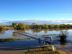 A full Thomson River (ABC Open Western Queensland) Tags: water rain town community roads floods longreach westernqueensland