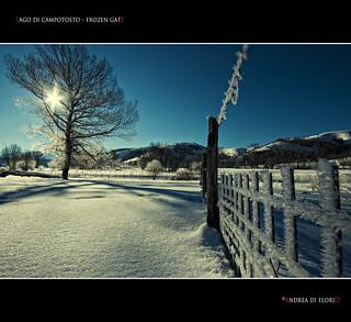 Lago di Campotosto - Frozen gate