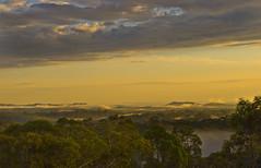 A Misty Morning (Explored) (edwinemmerick) Tags: morning trees light mist nature sunrise landscape golden nikon australia bluemountains nsw edwin valleys goldenlight d60 emmerick edwinemmerick