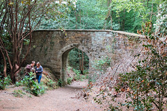 Looking for Pooh Bridge (Gravenor2012) Tags: forest lost sussex woods east pooh winnie ashdown hartfield 100acrewood