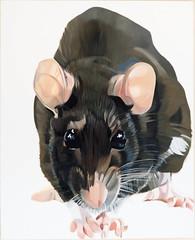 Dominique Leblanc Peinture