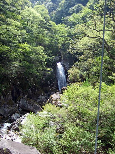 つり橋の途中から見た不動滝。|尾白川渓谷