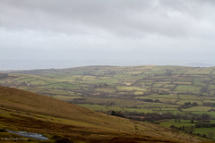 Brecon Beacons National Park (BiteYourBum.Com -) Tags: park mountain wales carmarthenshire unitedkingdom pony 350 national pro welsh brecon beacons cob runner canonef1740mmf4lusm aw lowepro llanddeusant dyfed llangadog welshmountainpony canonefs60mmf28macrousm breconbeaconsnationalpark biteyourbum canoneos7d dawnandjim canonspeedlite430exii sigma50500mmf4563dgoshsm biteyourbumcom welshponyandcob