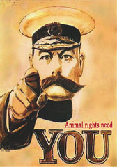 Animal Rights Need You