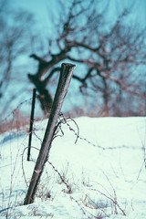 _MG_4580 (Bill Gagne Photography) Tags: winter snow color colors canon bokeh connecticut 135 135mm 135l hartfordcounty canonef135mmf2lusm bristolconnecticut vsco billsphotos hartfordcountyconnecticut canoneos5dmkll vscopresets billgagnephotography