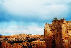 we're so small. (Kelly Marciano) Tags: film analog 35mm utah nationalpark xpro crossprocessed roadtrip velvia pentaxk1000 sw bryce brycecanyon velvia50