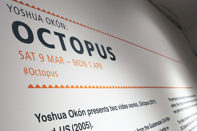 Octopus install 05