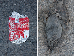 Destiny (Nature and human beings) Tags: coke toad cocacola coca diptich commontoad crapaud cras canettecrase urbaninteraction anmalcras disloqu