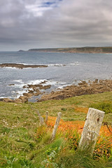 Orange County. (Andy Bracey -) Tags: sea seascape fence cornwall orangecounty crocosmia coastalpath sennen britishsummer bracey andybracey