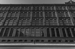 One Man (Antti Tassberg) Tags: street winter blackandwhite bw building window monochrome suomi finland europe eu scandinavia talo talvi tampere rakennus ikkuna satakunnankatu pirkanmaa frenckellinaukio